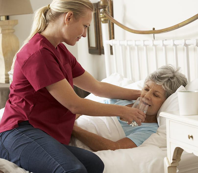 Palliative patient and carer